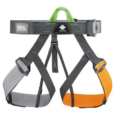 Group Adult Harness